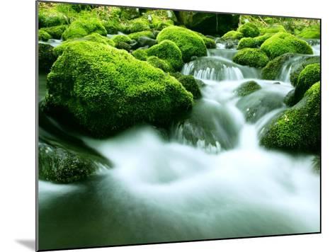 Mountain Stream--Mounted Photographic Print