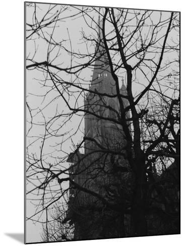 Tree and Church of Gothic Construction, Bern, Swiss-Tomaru Eiichi-Mounted Photographic Print