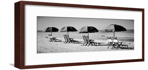 Beach Reunion-Gail Peck-Framed Art Print
