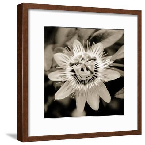 Blooming Flowers 5664-Rica Belna-Framed Art Print