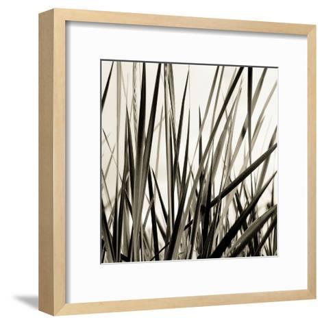 Grass and Reeds-Rica Belna-Framed Art Print
