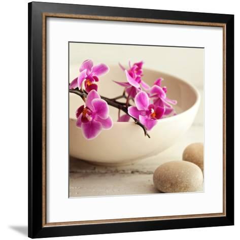 Zen Pebble--Framed Art Print