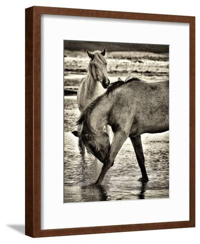 Beach Horses I-David Drost-Framed Art Print