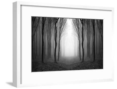 Dark Woods-PhotoINC-Framed Art Print