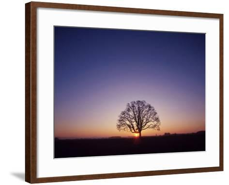 Sundown-PhotoINC-Framed Art Print