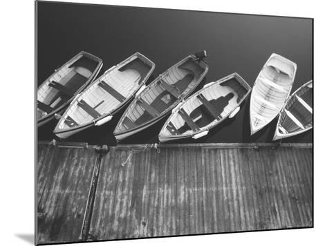 Tethering-PhotoINC-Mounted Photographic Print