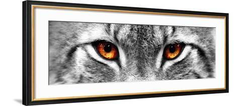 Lynx-PhotoINC-Framed Art Print
