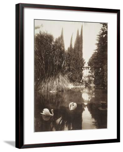 Palermo: in the Park of the Villa Tasca, 1895-Wilhelm Von Gloeden-Framed Art Print