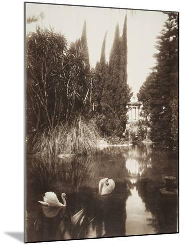 Palermo: in the Park of the Villa Tasca, 1895-Wilhelm Von Gloeden-Mounted Photographic Print