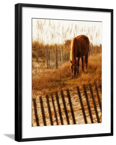 Solitary Light-PH Burchett-Framed Art Print