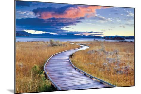 Pathway to Mono Lake-Dennis Frates-Mounted Photographic Print