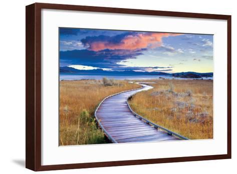 Pathway to Mono Lake-Dennis Frates-Framed Art Print