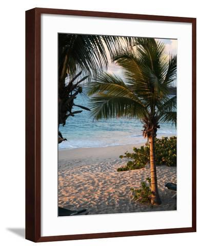 Sunset Palms II-Susan Bryant-Framed Art Print