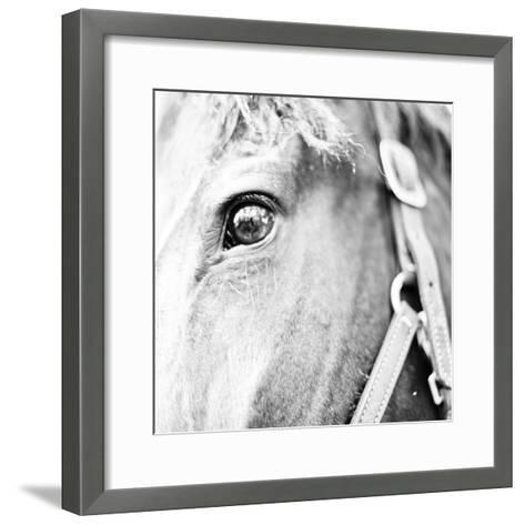 In the Stable I-Susan Bryant-Framed Art Print