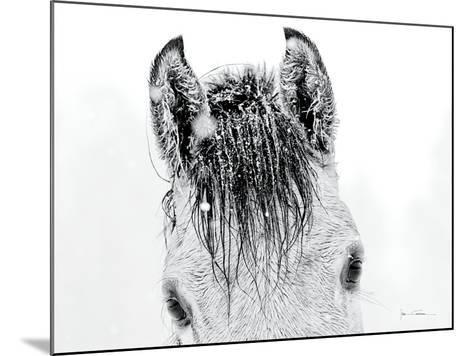 Snow Daze II Crop-Lisa Cueman-Mounted Photographic Print