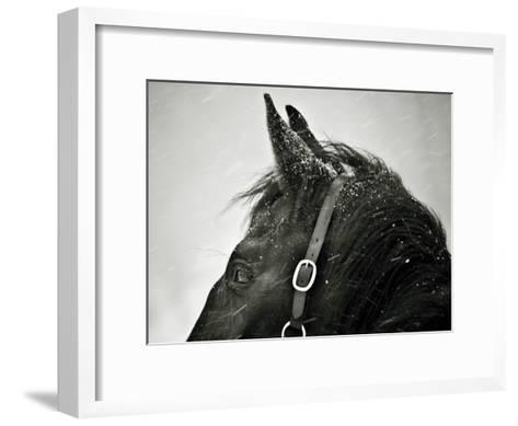 Snow Daze IV Crop-Lisa Cueman-Framed Art Print