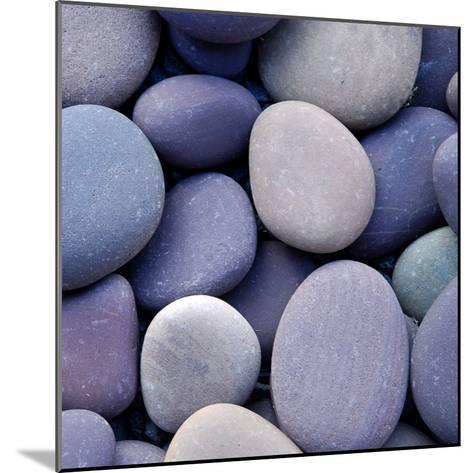 Purple Pebbles--Mounted Photographic Print