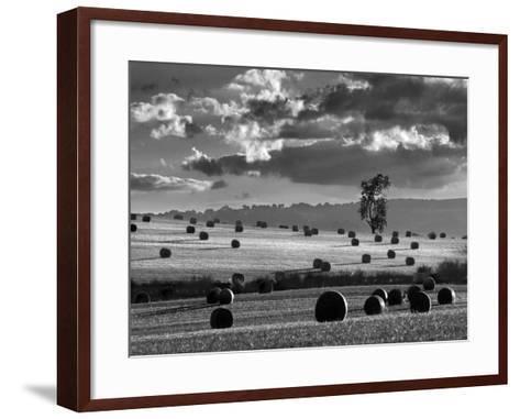 Rolls of Hay-Martin Henson-Framed Art Print