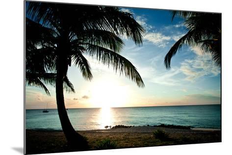 Sun Downer-Susan Bryant-Mounted Photographic Print