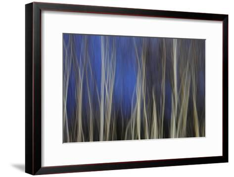Mystic Forest 1287-Rica Belna-Framed Art Print