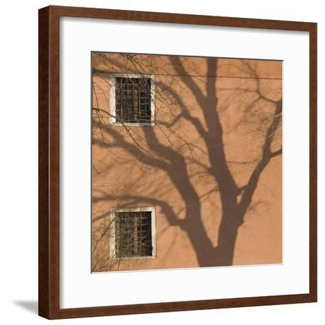 Shadow of Tree on Orange Venice Building Exterior-Mike Burton-Framed Art Print