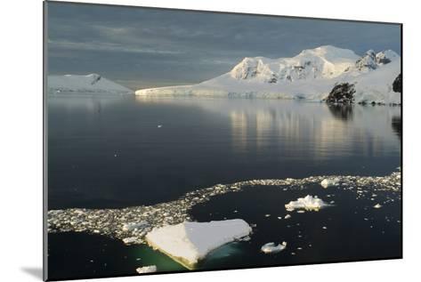 Paradise Harbor, Antarctica-Natalie Tepper-Mounted Photographic Print