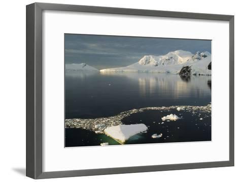 Paradise Harbor, Antarctica-Natalie Tepper-Framed Art Print