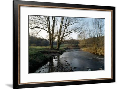 Bare Trees and River at Wurselen- Bardenberg,Wurmtal - Germany-Florian Monheim-Framed Art Print