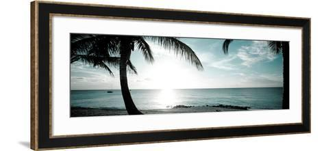Cool Bimini II-Susan Bryant-Framed Art Print