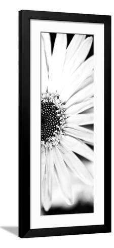 White Bloom I-Susan Bryant-Framed Art Print