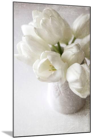 Vanishing in the White Elegance-Sarah Gardner-Mounted Photographic Print