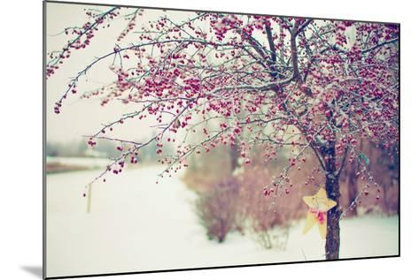 Winter Berries I-Kelly Poynter-Mounted Photographic Print