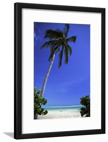 Palm Tree on a White Sand Beach, Bahamas-Natalie Tepper-Framed Art Print