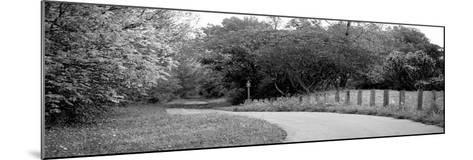 Country Road-Kelly Poynter-Mounted Photographic Print