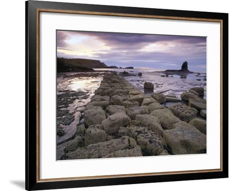 Saltwick Bay Is South of Whitby and the Distinctively Shaped Black Nab Rock- LatitudeStock-Framed Art Print