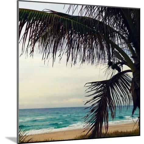 Palm and Beach-Lisa Hill Saghini-Mounted Photographic Print