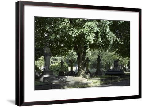 Trees and Graves at Brompton Cemetery, Kensington, London-Richard Bryant-Framed Art Print