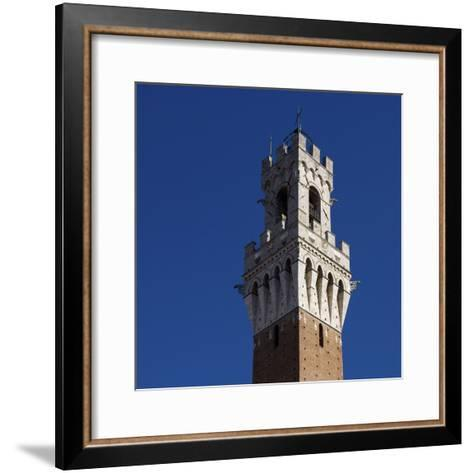 Siena Architectural Detail of Crenellated Tower-Mike Burton-Framed Art Print