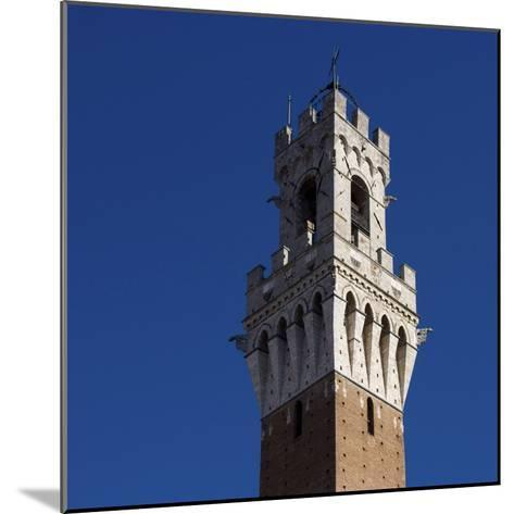 Siena Architectural Detail of Crenellated Tower-Mike Burton-Mounted Photographic Print