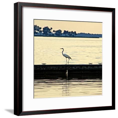 Along the Pier-Bruce Nawrocke-Framed Art Print
