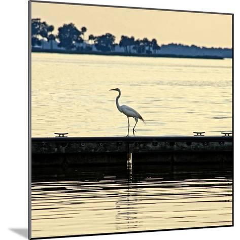 Along the Pier-Bruce Nawrocke-Mounted Photographic Print
