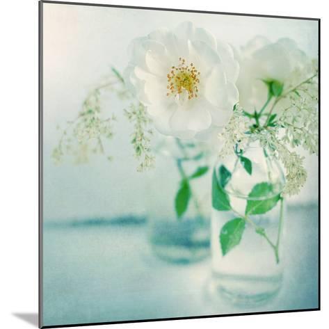 White Peonies-Sarah Gardner-Mounted Photographic Print