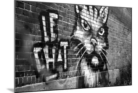 Le Chat Graffiti--Mounted Photo