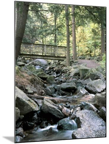 Bridge over Waterfall in a Forest--Mounted Photographic Print