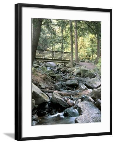 Bridge over Waterfall in a Forest--Framed Art Print