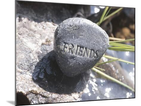 Rock with the Word Friends Beside Water--Mounted Photographic Print
