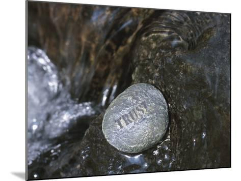 Rock with the Word Trust in Water--Mounted Photographic Print