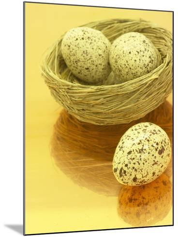Speckled Eggs in a Little Bird's Nest--Mounted Photographic Print