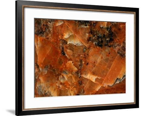Close-up of Abstract Texture--Framed Art Print