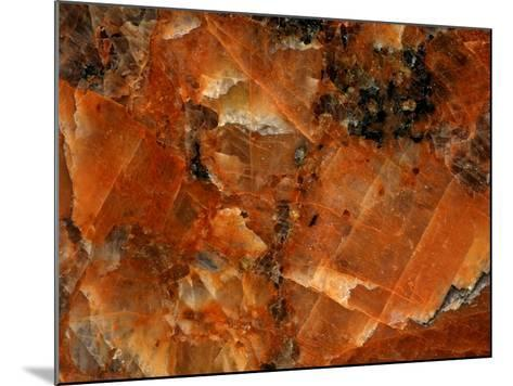 Close-up of Abstract Texture--Mounted Photographic Print